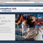 Triumphus Tek - IT Business Strategy Company Website
